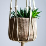 "Macrame Plant Hanger / Hanging Planter for Succulent or Cactus available in 30"", 40"" or 50"""