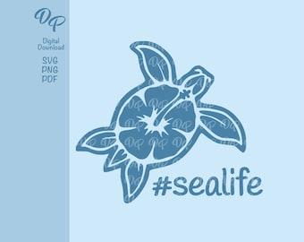 Hibiscus Sea Turtle SVG   DP317   Beach   Instant Download