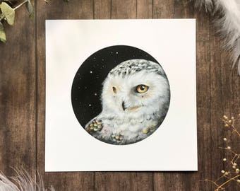 Wondering Snowy Owl from Owls that Wonder Collection 5x5 Art Print | Owl Art