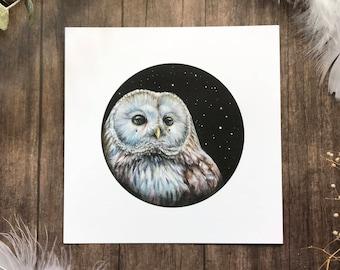 Wondering Ural Owl from Owls that Wonder Collection 5x5 Art Print | Owl Art