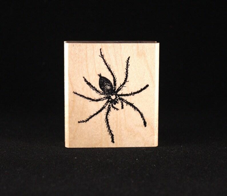 Spider 1.88 x 1.81 image 0