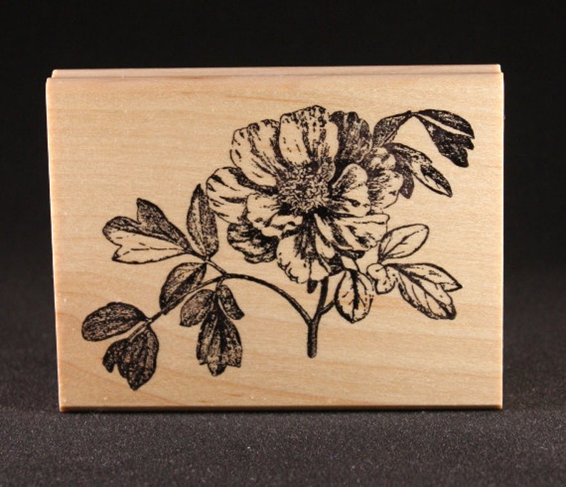 Peony Rubber Art Stamp 4 x 2.25 image 0
