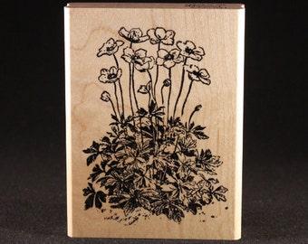 "Anemone Rubber Art Stamp (3"" x 4"")"