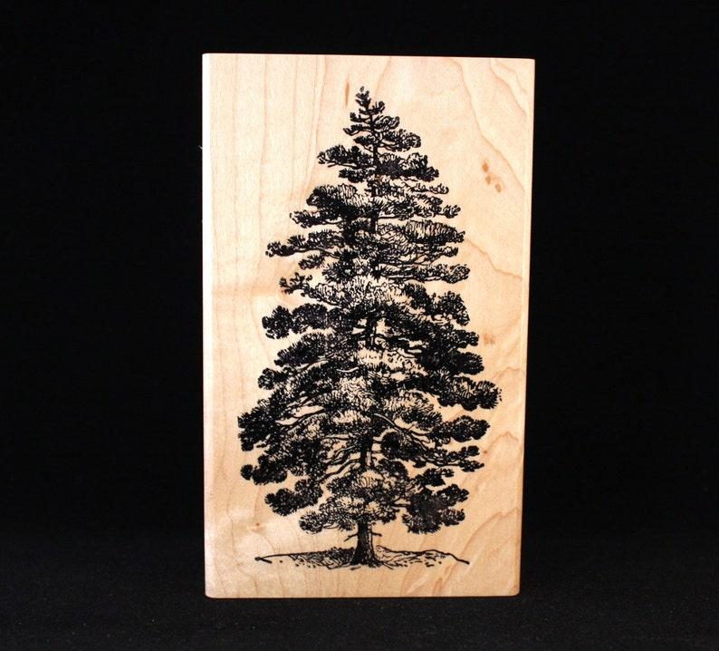 Pine Tree 2.75 x 5 image 0