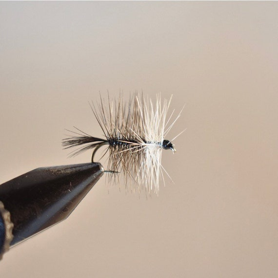 BLACK GNAT Dry fishing flies size /& quantity options available by Dragonflies