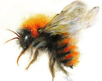 Bee watercolor painting - Bumble Bee Giclee Print. Nature Illustration. Honey Bee, Flying bee, Lovely Bee art Dorm Decor Wall
