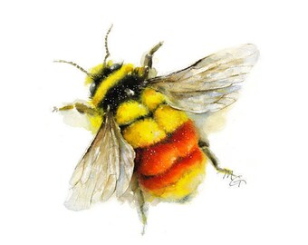 Tri Colored Bumble Bee Watercolor