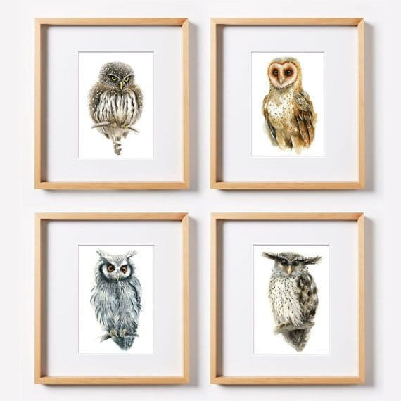 Owl Watercolor - Set of 4 Giclee Prints  -  Wildlife Illustration, Woodland Watercolor Paintng, Animal Wall decoration, Bird illustration