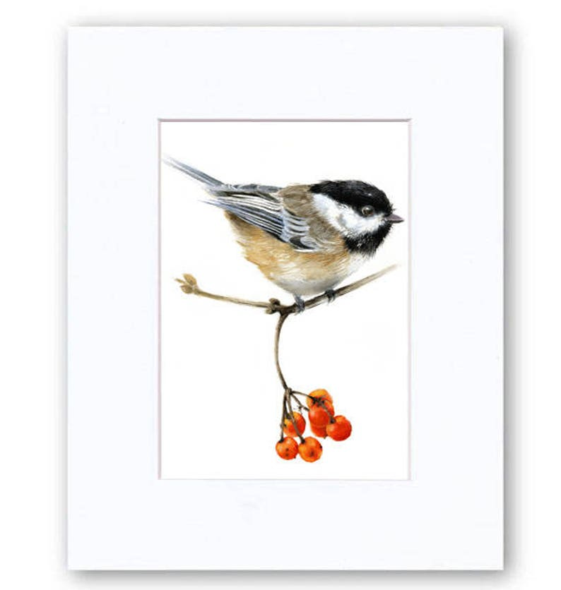 Chickadee Perched on a Branch with Red Berries Watercolor Giclee Print Bird Illustration