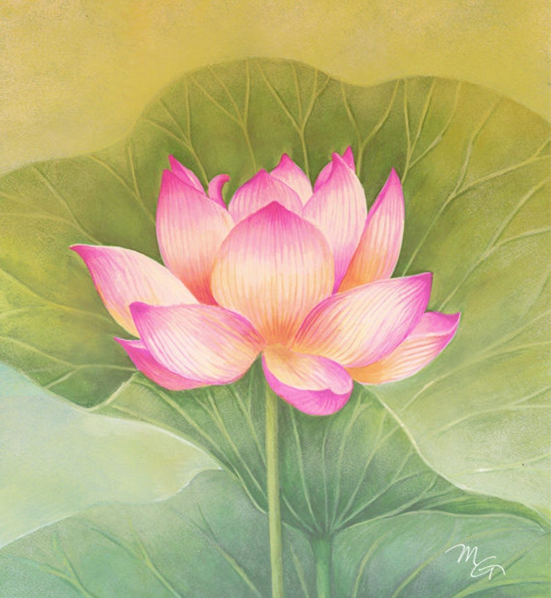 Pink Lotus Flower Watercolor Painting Art Print Children Art Etsy