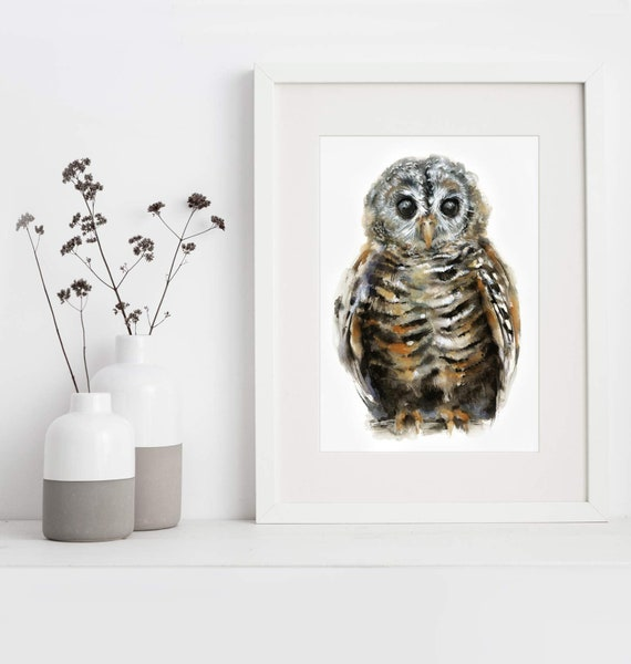 Baby Owl Watercolor Art Print -  - Chaco Owl - Woodland Bird