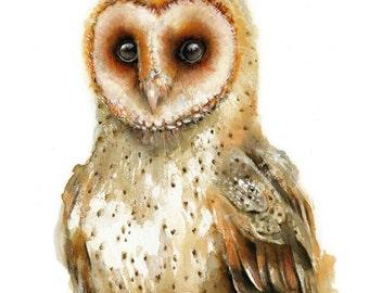 Owl watercolor painting - Bird Art Print. Bird Illustration.