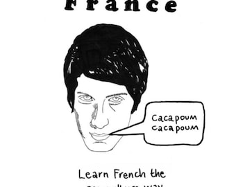 Merde in France: Learn French the Pop Culture Way - a small press book.