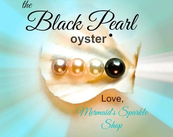 The Black Pearl Oyster, Black Pearl Guarantee, 7-9mm round pearl, open your own oyster, oyster opening party, pearl party, pearl guaranteed