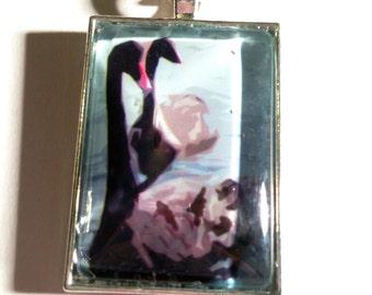 Black Swan Wildlife Photo Silver Pendant Necklace