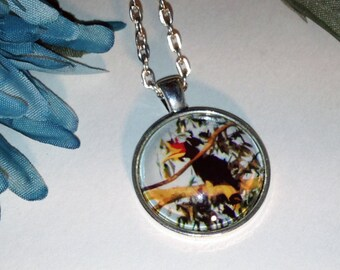 Hornbill Nature Photo Silver Pendant Necklace