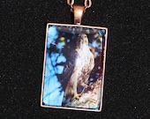 Eagle Wildlife Photo Copper Pendant Necklace