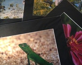Custom Wildlife Photo Pri...