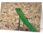 Lizard Blank Greetings Ca...