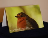 Robin Season's Greeti...