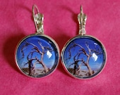 Death Valley Tree Earring...