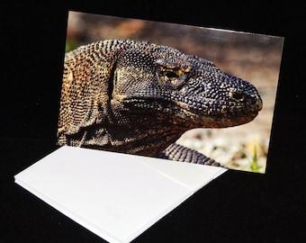 Komodo Dragon Blank Greetings Card