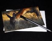 Deer Wildlife Photograph Blank Greetings Card