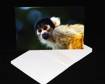 Squirrel Monkey Blank Greetings Card