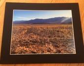 """Superbloom in Death Valley - Wildlife Photo Print (8"""" x 6"""")"""