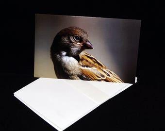 Sparrow Blank Greetings Card