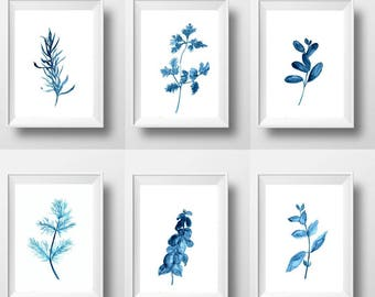 Kitchen herbs Set of 6 print watercolor painting wall art herbal plants poster blue white illustration decor 16x20 24x36 4x6 small and large