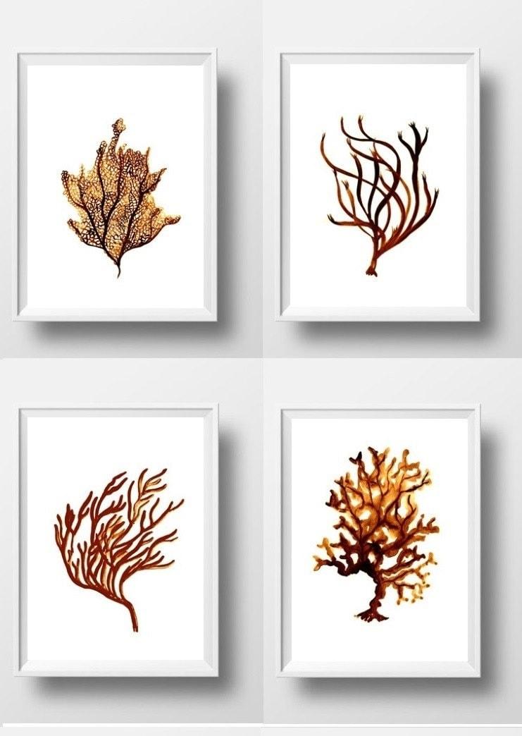 Satz von vier 4 Meer Korallen Abbildung Aquarell Korallenriff   Etsy
