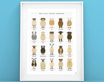 British Sheep Breeds - Sheep Print - Sheep Art - Sheep Gift idea - Sheep Illustration - Sheep Poster - Farm Animal Art Print - Nursery Art