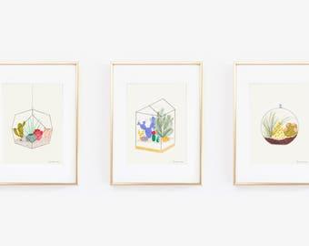 Set of 3  terrarium prints geometric print nature Art illustration glicée A4 greenhouse succulent cactus terrarium house