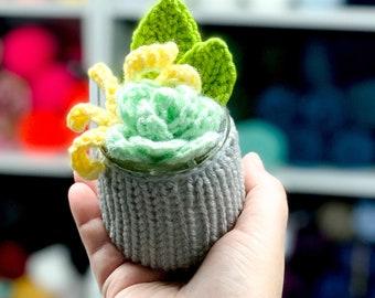 Crochet Succulents | Home Decor | Home Decoration | Plants You Can't Kill