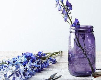 16 oz Mason Jar // Purple or Green // American Heritage Collection // Mother's Day Gift // Fun Storage Jars // Unique Gift Ideas // Unusual