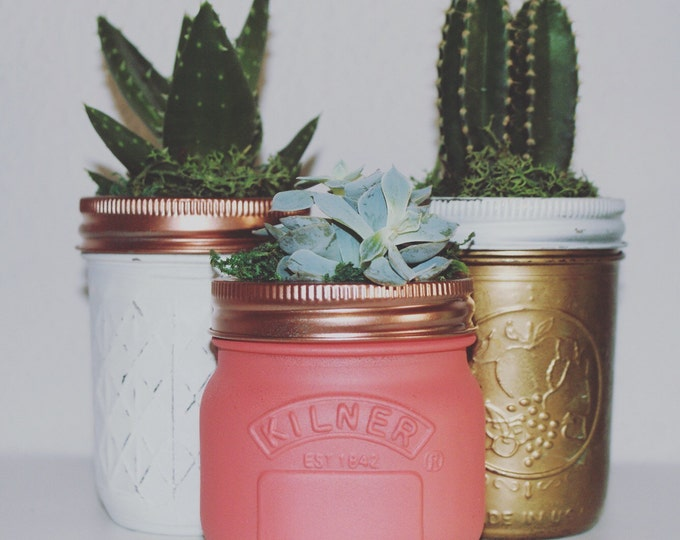 Succulent Jar // Beautifully Hand Painted Ball Mason Jars // Home Decor // Cactus Jar // Unusual Gift Ideas // Mother's Day Gift // Unique
