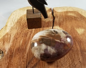 121g Petrified Wood Palm Stone! ~Witch, Magick, Nature