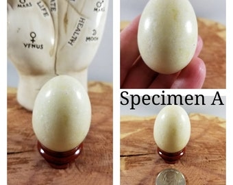 Your Choice Green Serpentine  Egg w/ Stand! ~Witch, Mystic, Sacred Sex