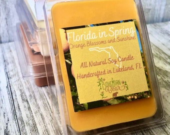Florida in Spring All Natural Soy Wax Melt , Orange Blossom Scented , Orange Soy Candle , Organic Candle, Handmade Soy Candle , 6 pieces