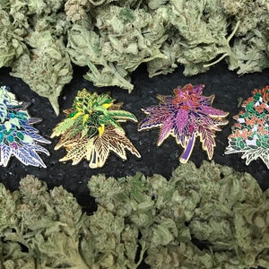weed pot pins. nugs reefer 420 herb Cannabis Nug Pin 10th Harvest kind bud Blue Cheese marijuana dank chronic