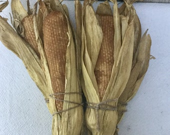 Stuffed Primitive Corn with Husks