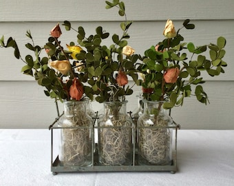 Glass Bottle Caddy with Boxwood and Buds