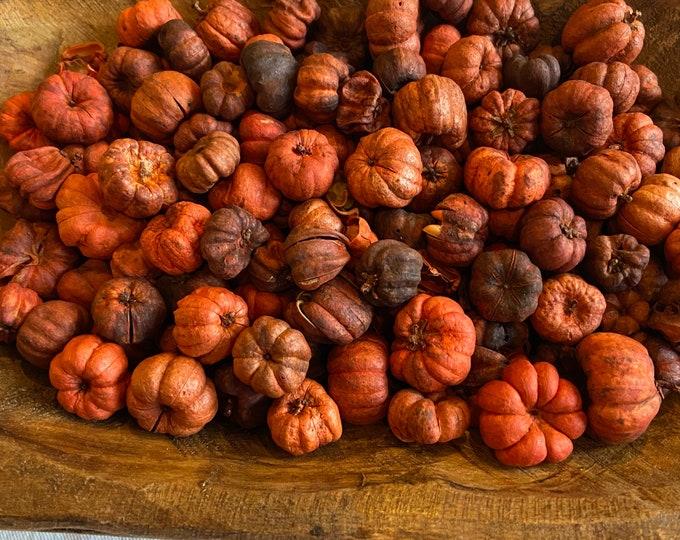 Featured listing image: Orange Putka Pods