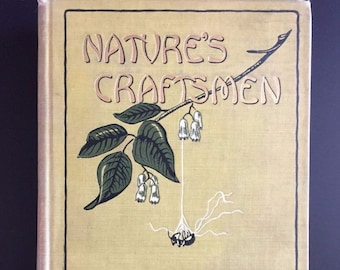 Nature's Craftsmen, Ants and Insects, Henry Christopher McCook, Illustrated 1907