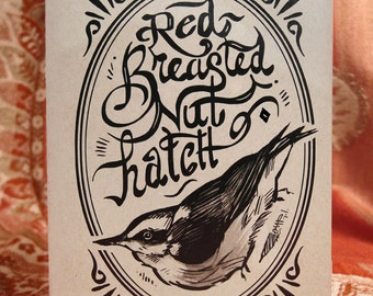 Red-breasted Nuthatch Cards & Envelopes (5-of-a-Feather pack)