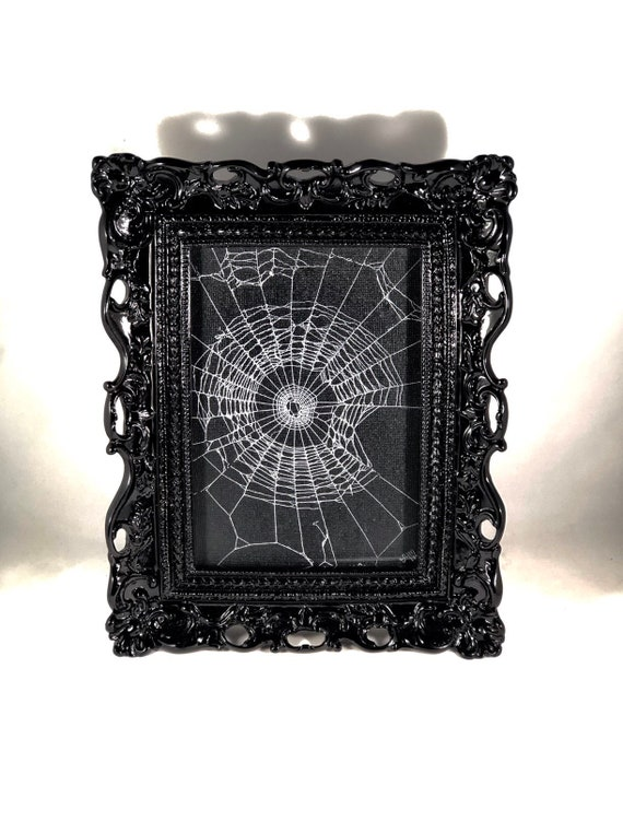 Real Spider Web,  Preserved Spider Web, Framed Spider Web, Spider Web Art, Spider Taxidermy, Real Nature Decor, Gothic Home Decor