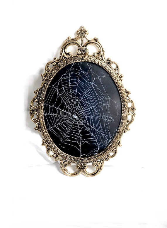 Preserved Spider Web, Framed Spider Web, Spider Web, Real Spider Web, Real Spider Web, Spider Art, Real Nature Decor, Gothic Home Decor