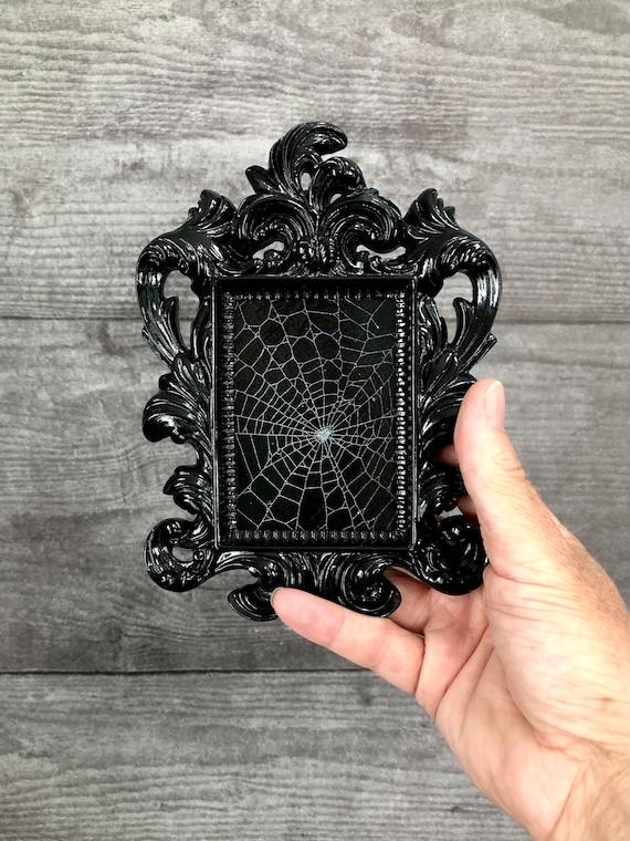Itsy Bitsy Spider Web, Preserved Spider Web, Framed Spider Web, Spider Web, Real Spider Web, Real Spider Web, Spider Art, Real Nature Decor