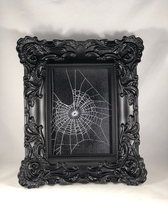Genuine Preserved Spider Web Framed Spider Web Real Spider Web